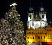 Christmas Tree at the Old Town Square in Prague