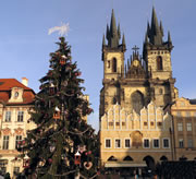 Christmas Tree at the Old Town Square